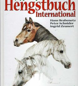 Shagya-Araber-Hengstbuch-International