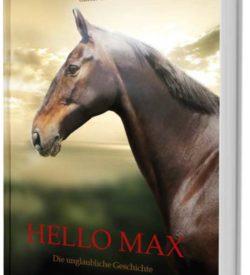 Hello Max
