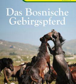 Das Bosnische Gebirgspferd