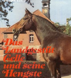 Das Landgestüt Celle und seine Hengste