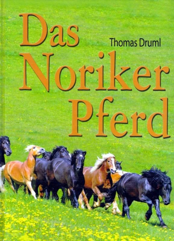 Das Noriker Pferd