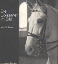 Die Lipizzaner im Bild
