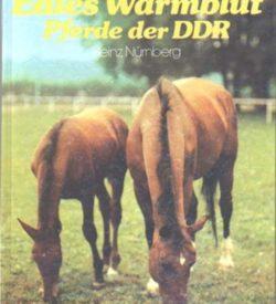 Edles Warmblut Pferde der DDR