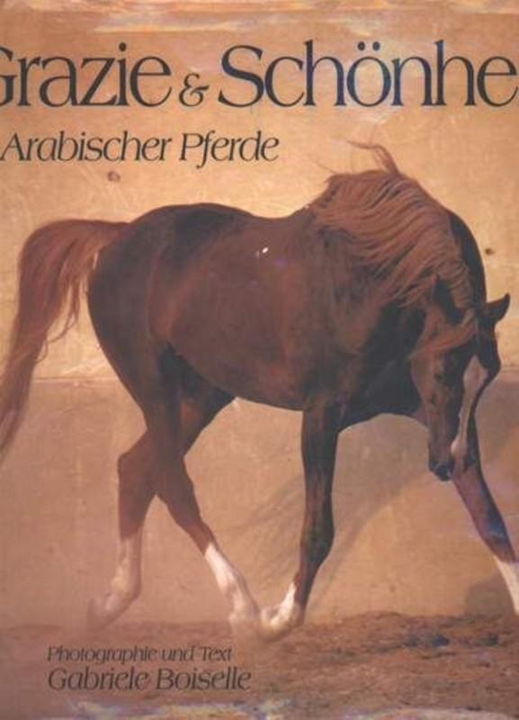 Grazie & Schönheit Arabischer Pferde