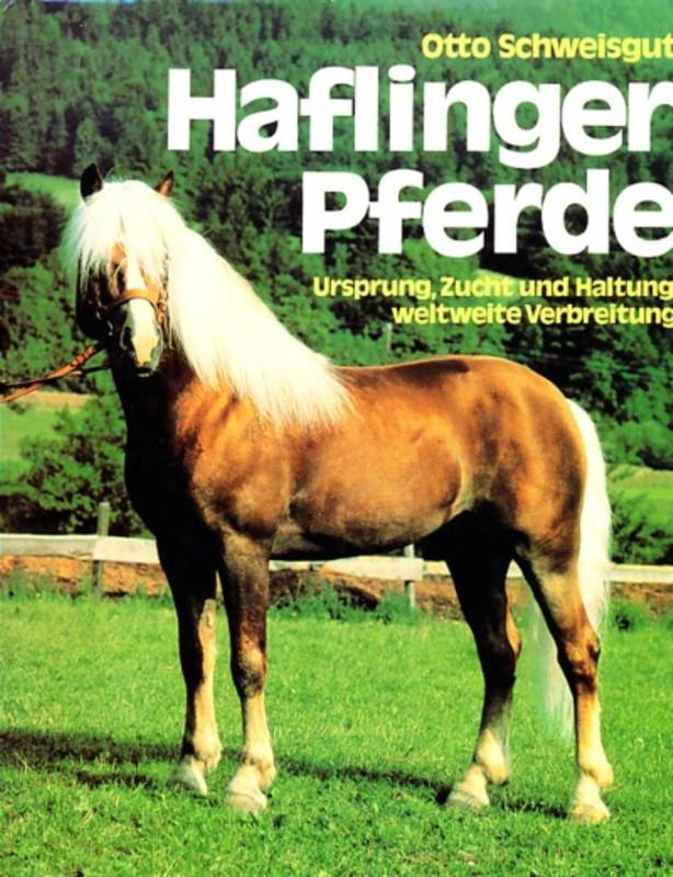 Haflinger Pferde Schweisgut