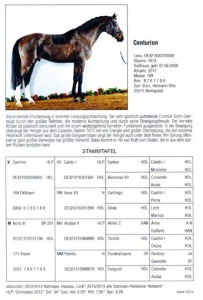 Holsteiner Hengstbuch Nachtrag 2012