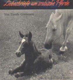 Liebesbriefe um arabische Pferde