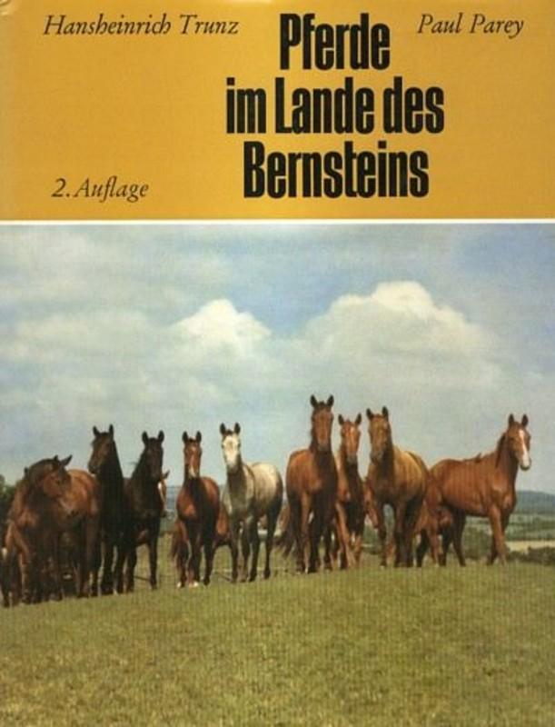 Pferde im Land des Bernsteins