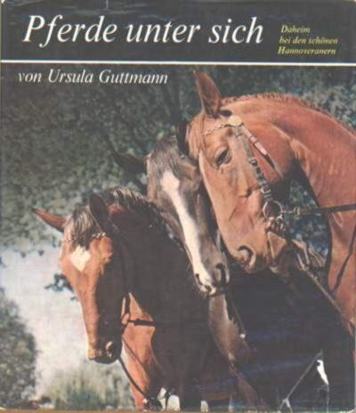Pferde unter sich Hannoveraner