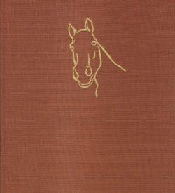 Pferdezucht Haltung und Sport