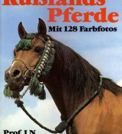 Rußlands Pferde