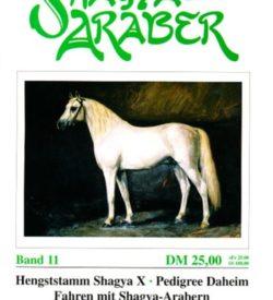 Shagya Araber 11