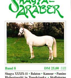 Shagya Araber 8