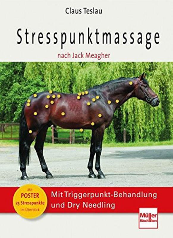 Stresspunktmassage nach Jack Meagher