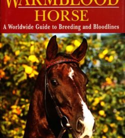 The international Warmblood Horse