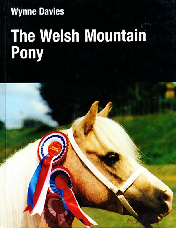 The Welsh Mountain Pony