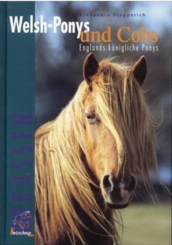 Welsh-Ponys und Cobs
