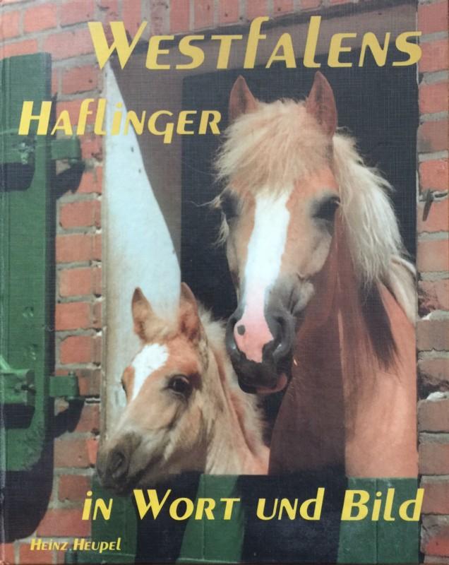Westfalens Haflinger in Wort und Bild