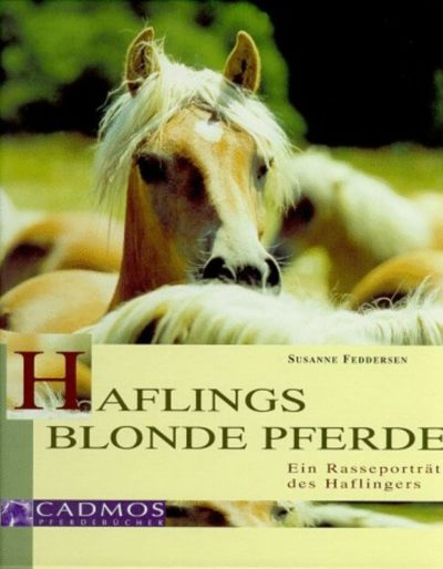 Haflings blonde Pferde