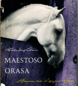 Maestoso Orasa