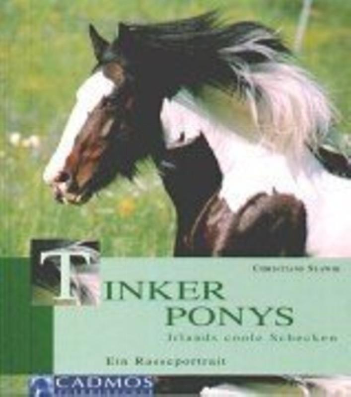 Tinker Ponys: Irlands coole Schecken