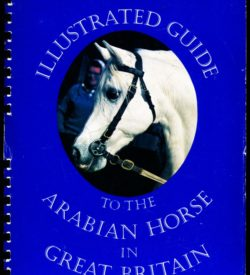 An illustrated Guide to the Arabian Horse in Great Britain