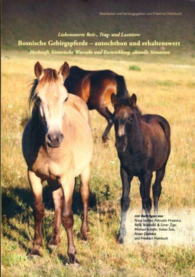 Bosnische Gebirgspferde