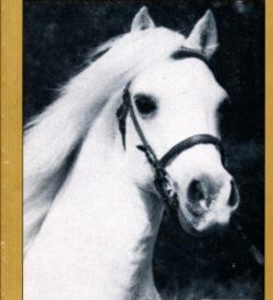 Gold Journal 1997