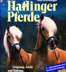 Haflinger Pferde