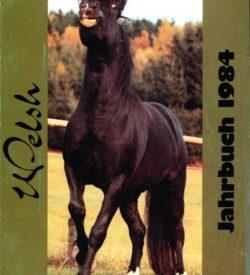 Welsh Jahrbuch 1984