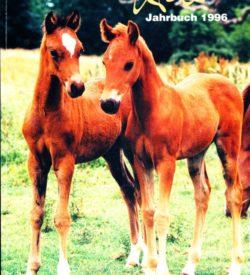 Welsh Jahrbuch 1996
