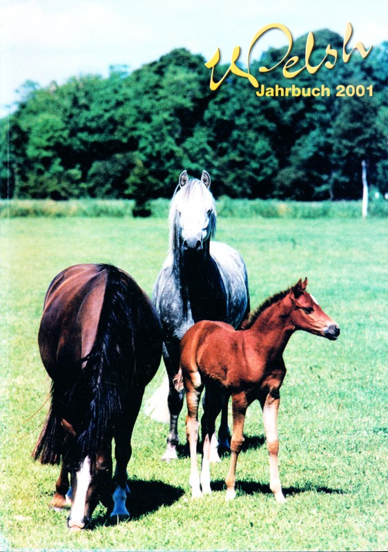 Welsh Jahrbuch 2001