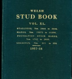 Welsh Stud Book Volume XL