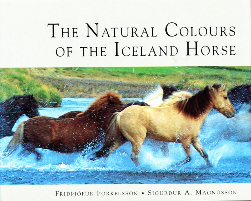 The Natural Colours of the Iceland Horse