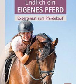 Endlich ein eigenes Pferd Expertenrat zum Pferdekauf