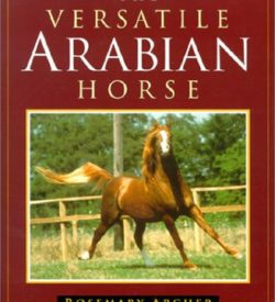The Versatile Arabian Horse Rosemary Archer