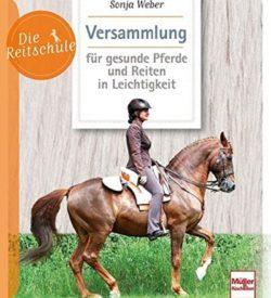 Versammlung für gesunde Pferde und Reiten in Leichtigkeit